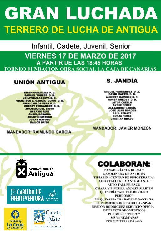 Cartel Lucha Canaria